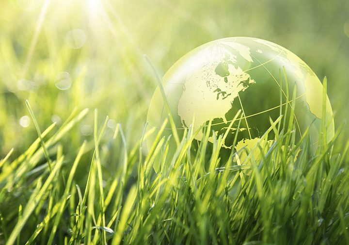 """Подобряване на енергийната ефективност на """"ПАЛОМИТА"""" ЕАД"""